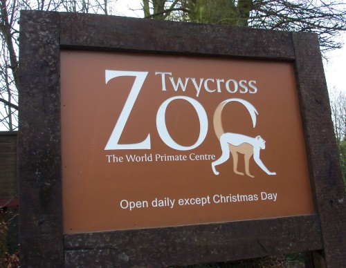 A great place, unless you like to look at monkeys on Christmas day, Twycross Zoo (2006)
