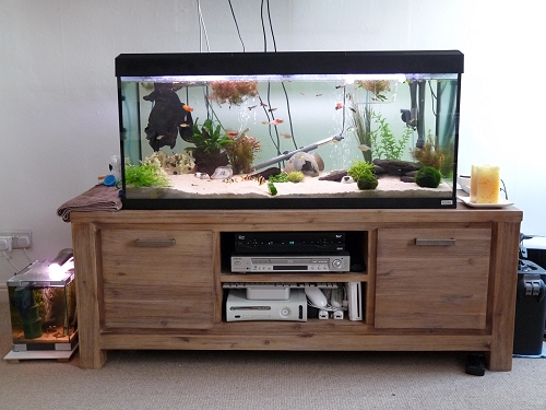 A closer photo of our fish tanks. UK, 2010
